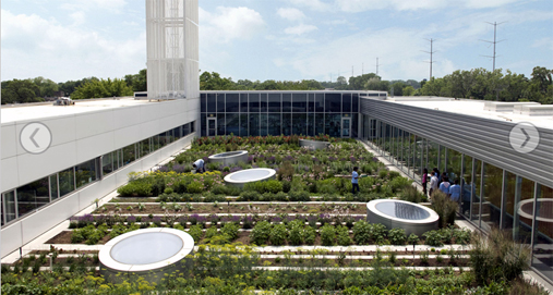 asla features sustainable landscapes
