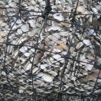 Bags of mussel shells as another protective barrier