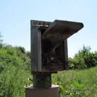Nesting boxes set up for research