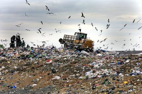 landfill1_styrofoam
