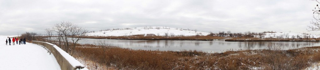 Winter at Freshkills Park
