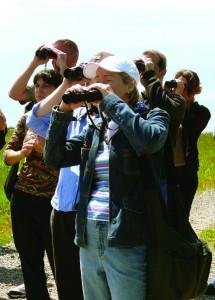 Bird watchers on a tour of Freshkills Park