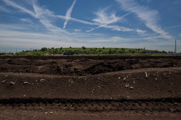 Compost heap adjacent to Freshkills Park, photo courtesy of Jake Naughton, New York Times