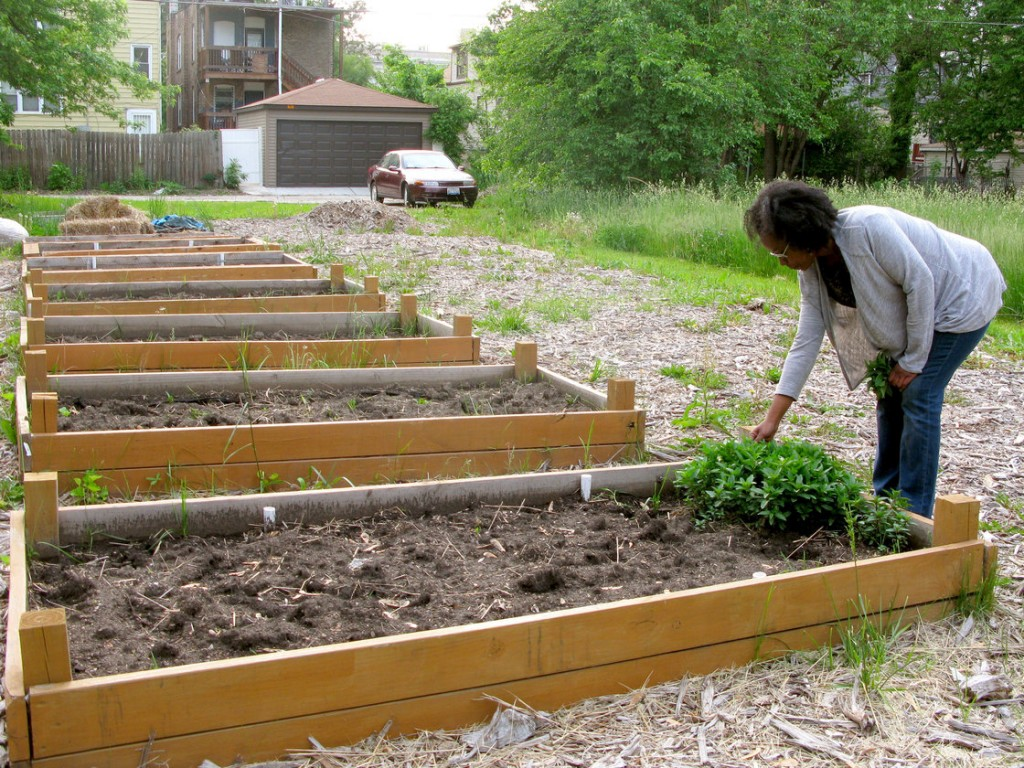 Source- NPR (For Sale: Vacant Lots on Chicago Blocks, Just $1 Each) July 2nd 2014