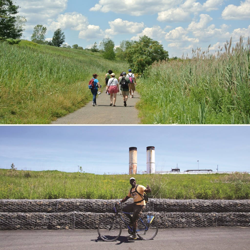 How to Discover Freshkills Park
