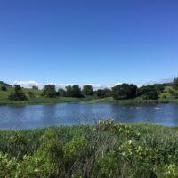 water monitoring