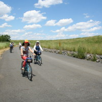 Freshkills Park Alliance