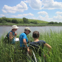 Wetland Restoration Monitoring