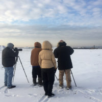Christmas Bird Count 2017