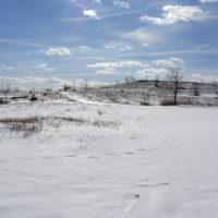 Freshkills Snow
