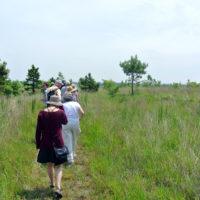 Tour of Penn & Fountain Landfills, led by John McLaughlin.