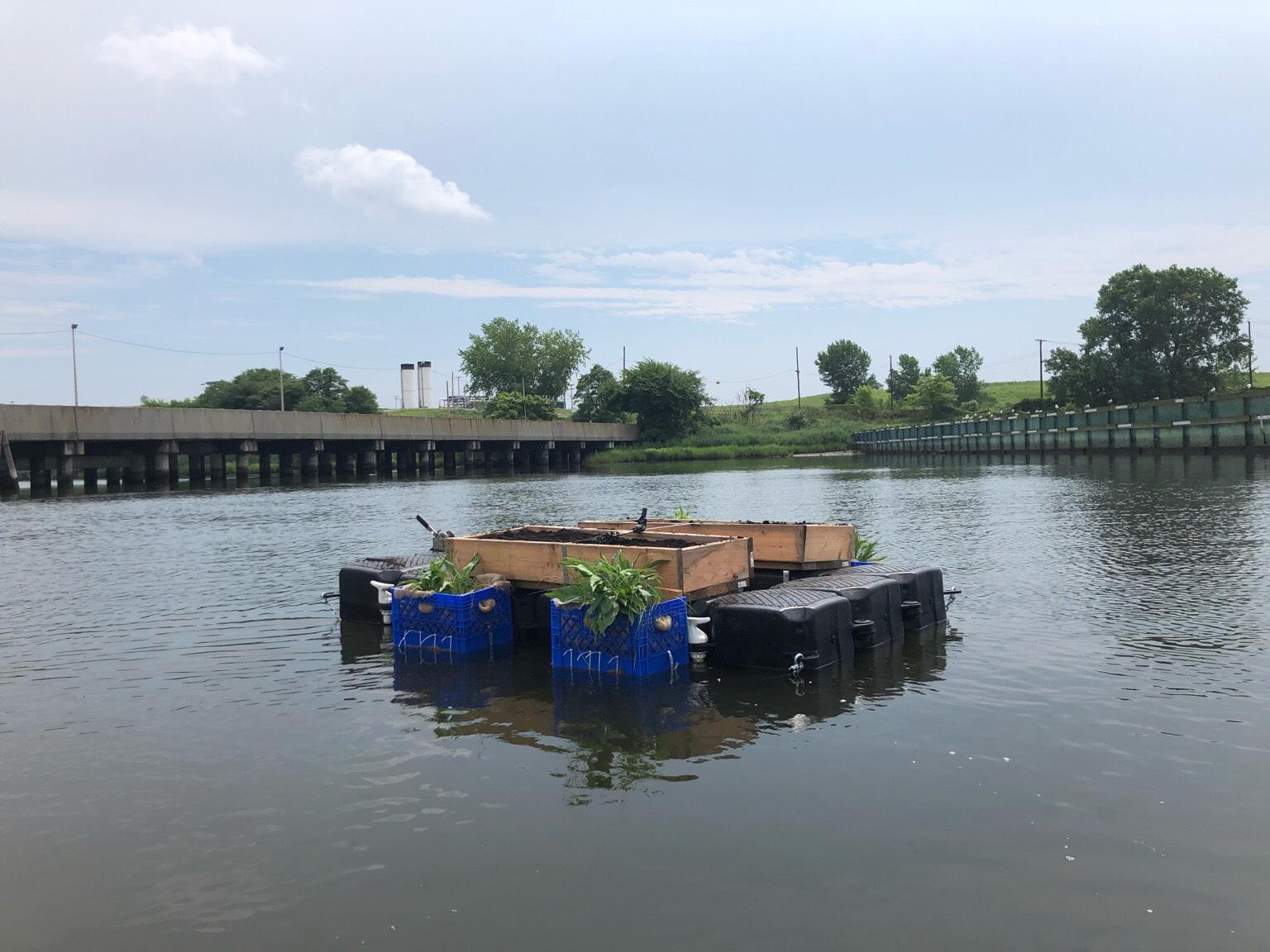 Living Dock Freshkills Park